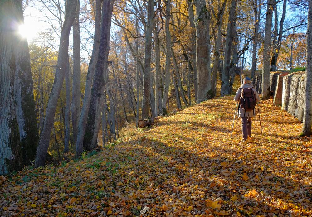 Nordic-Walking-Monte-Livata