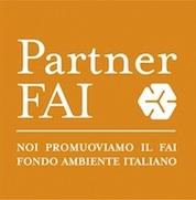 partner_FAI