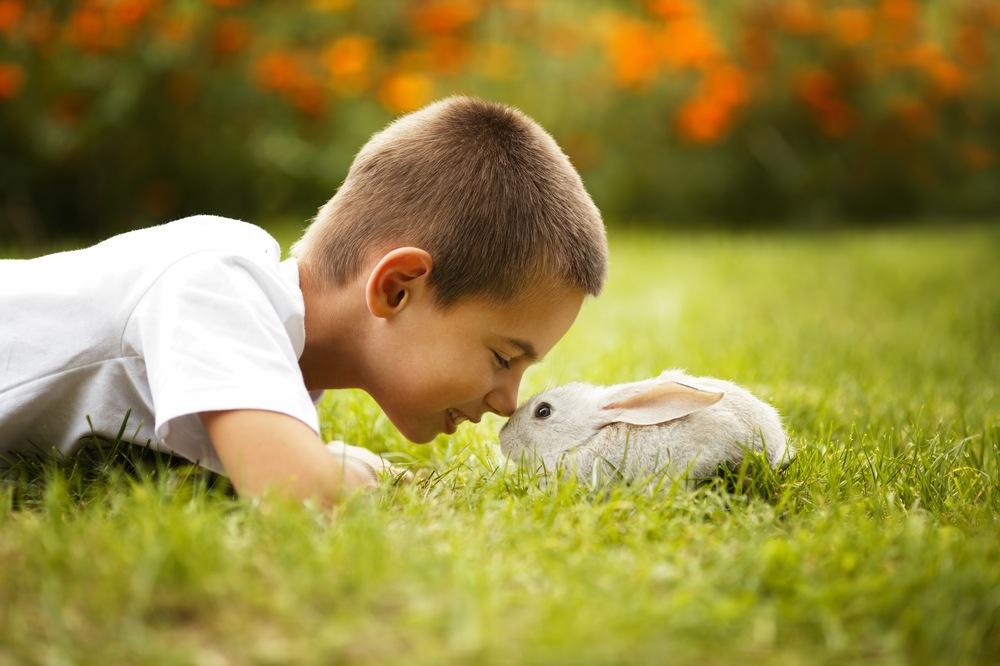 fattoria-didattica-tivoli-coniglio