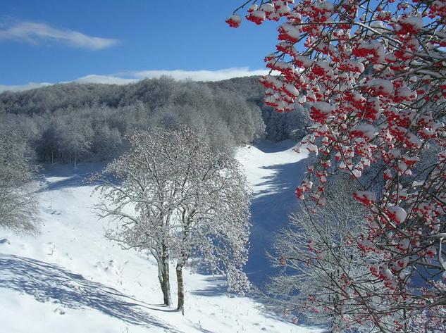 skiing-piste-livata-nordic
