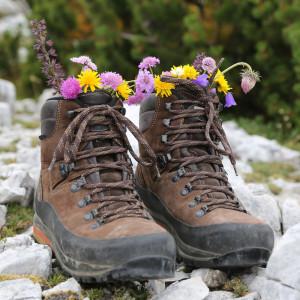 tivoli-hiking
